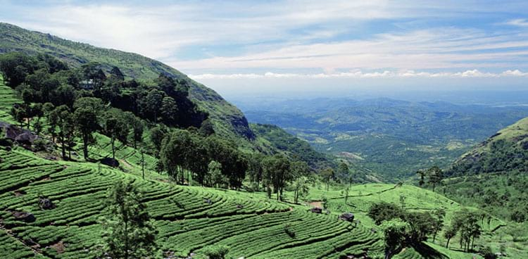 Sri Lanka Cheap Package Holidays